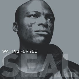 Seal альбом Waiting For You