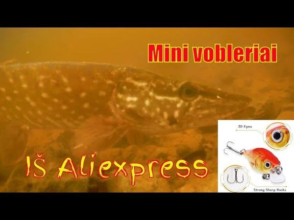 Mini vobleriai iš Aliexpress / Velniapilis / Velniapilio ola / Devil's Castle in Lithuania