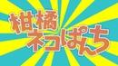 【みきとP/ mikitoP】Rin Kagamine/「柑橘ネコぱんち」鏡音リン