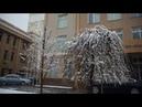 Рифат Гумеров Последний снег на Чиланзаре