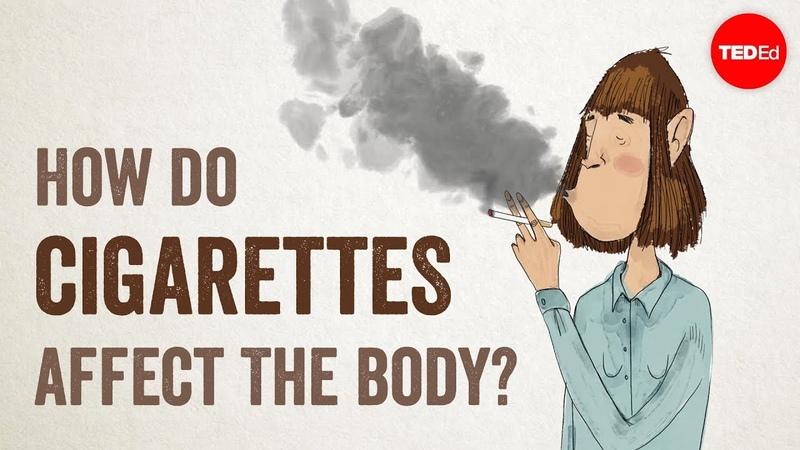 How do cigarettes affect the body? - Krishna Sudhir