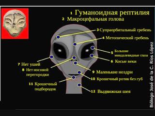 Выступление российских ученых на конференции в Перу с результатами исследования тел инопланетян