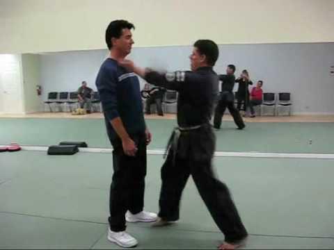 American Kenpo Karate Fastest Hands