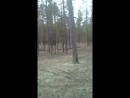 Марат Валеев - Live