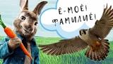 Кролики поют Фамилие песняFamiliar Ё-МОЁLiam Payne &amp J Balvin - Familiar