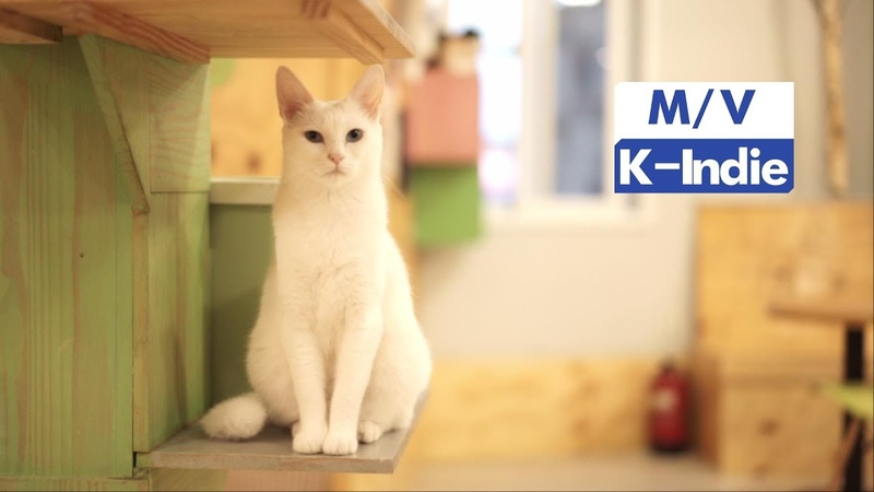 [M/V] Bigtiger Group (빅타이거 그룹) - 나는 고양이와 살고 있습니다 (feat. 양반, 오복))