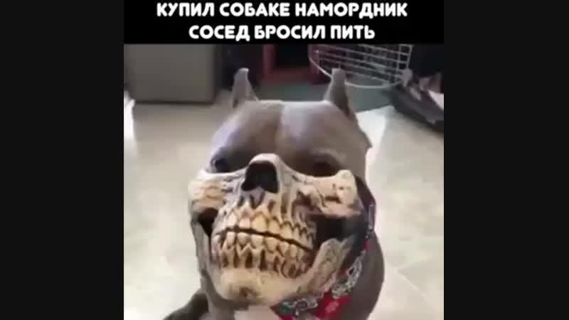Новый метод кодировки))