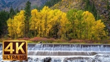 4K Fall Nature - Autumn Waterfalls - Washington State - 3 HRS Soothing Sound of Water