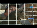 Царь-птица: в Якутии появился первый заводчик хищных птиц