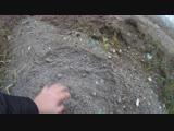 Пепел с Мусоросжигательного завода № 4 ,захоранивают в д. Мотяково, д. Машково ,в д. Марусино. МО, Люберецкий округ, д.Мотяково