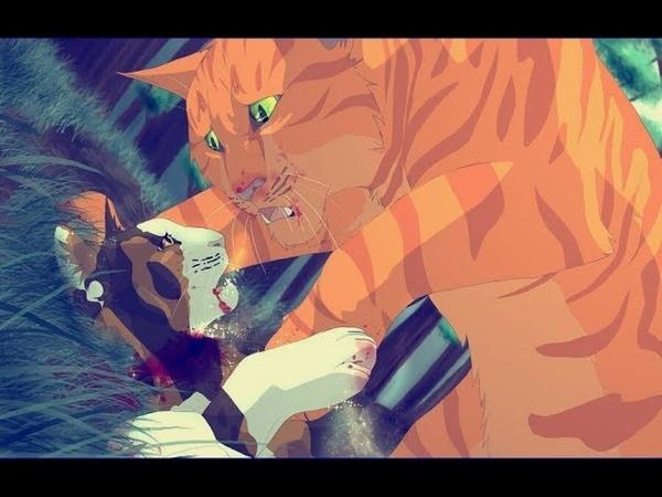 Коты воители: Ты убил меня сам дурак.