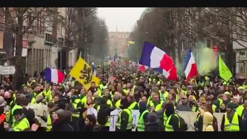 Jan 2019. Protests in France
