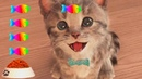 Play My Favorite Pet Cute Baby Cat Care Kids Games Little Kitten Learning For Toddlers Children