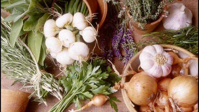 Паразиты в организме ПРОТИВОПАРАЗИТАРНЫЕ продукты для профилактики и лечения!