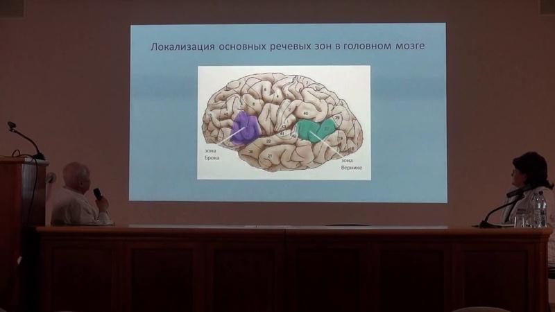 Нейропластичность - основа восстановления функций после инсульта. Лекция профессора А. С. Кадыкова