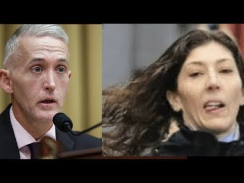 Trey Gowdy Shocked Lisa Page With One Question