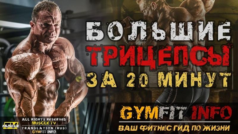 БОЛЬШИЕ ТРИЦЕПСЫ за 20 МИНУТ Тренировка СУПЕРСЕТ от ДЖАСТИНА ВЕССЕЛЬСА RUS Канал GymFit INFO