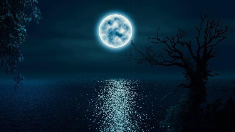 Ellin Spring — All Night (Original Mix)