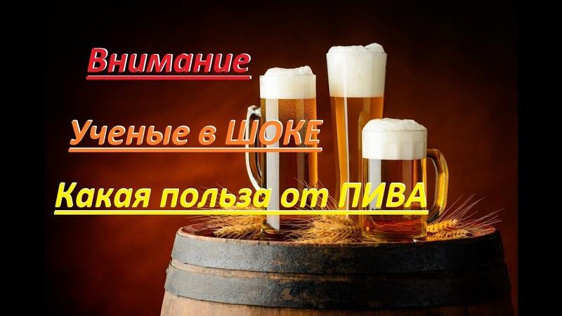 Пивоваров кислород польза пива Brewers oxygen beer use