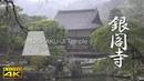 [4K] GINKAKU-JI Temple at dusk under a drizzle The Garden of Kyoto [4K] 銀閣寺 京都の庭園