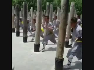 Traditional shaolin kung fu training in china. great way to condition the body.
