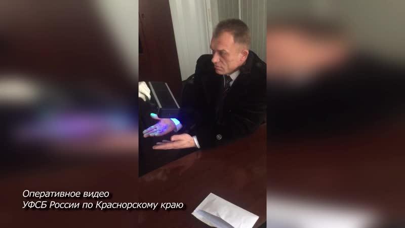 Задержание главы красноярского Росприроднадзора (Путин и Медведев смотрят с портретов)