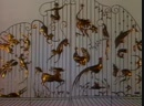 В мире животных. Курильские острова. 1990 г.