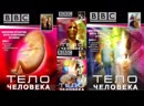BBC Тело человека 01 серия BBC The Human Body 1998