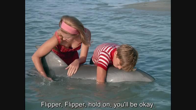 Флиппер ENG SUB - 1 сезон 25 серия [Flipper S01 E25 - Flipper And The Elephant: Part II] (1964-1965)