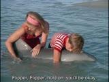 Флиппер ENG SUB - 1 сезон 25 серия Flipper S01 E25 - Flipper And The Elephant Part II (1964-1965)