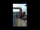 Как безопасно перевести стало через дорогу Правильно! По пешеходному мосту!