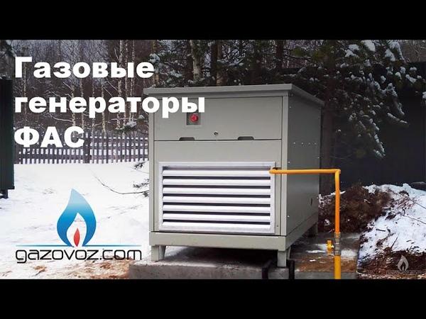 Газовый генератор ФАС (FAS): обзор, отзывы