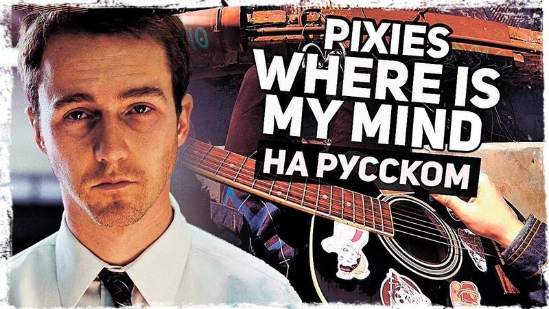 Pixies - Where Is My Mind - Перевод на русском (Acoustic Cover) Музыкант вещает