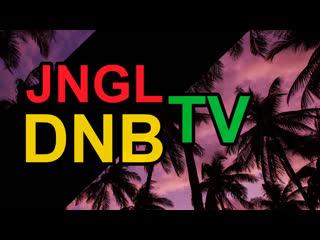Jungle dnb tv | 24/7