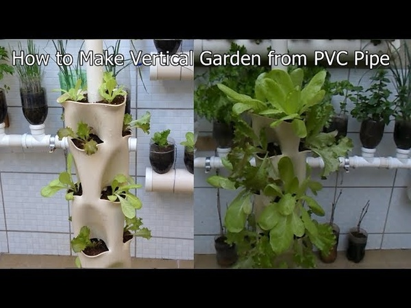 How to Make Vertical Garden from PVC Pipe