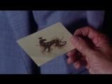 Саламандра La salamandra ozv Интра-Коммуникейшнс