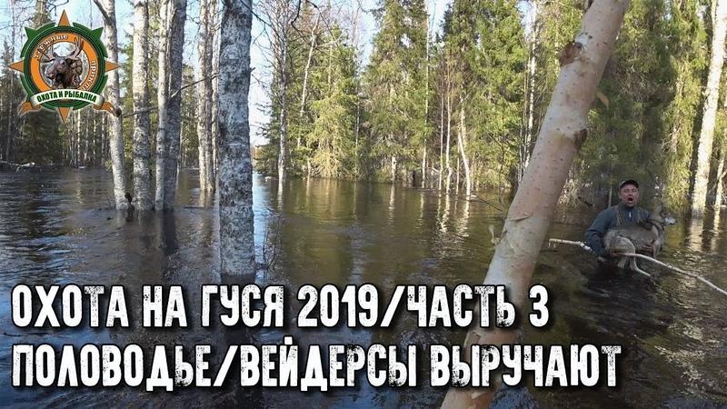 Охота на гуся 2019Еле выбрались с избыПоловодье3 часть