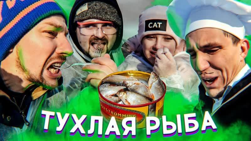 Макс Брандт Блогеры пробуют Сюрстрёмминг Масленников Павлов Тилльняшка