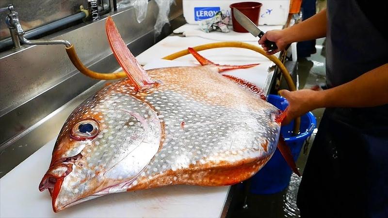 Japanese Street Food GIANT OPAH SUNFISH Okinawa Japan