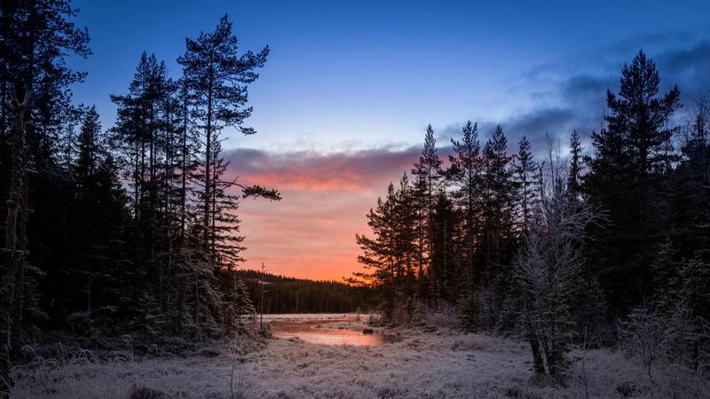 Картинка природа. Sweden, зима, Mangskog, Arvika.