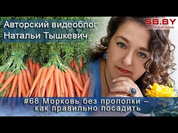 Морковь без прополки – как правильно посадить