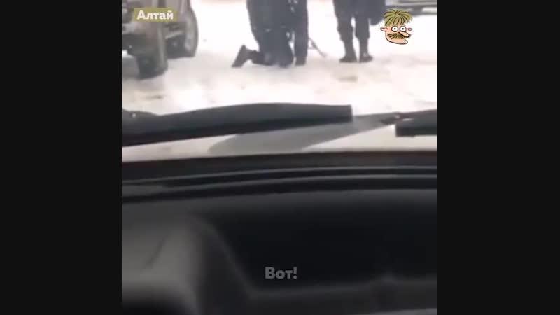 Полицаи как они есть!