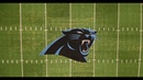 Panthers' Midfield Logo Reveal
