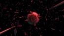 Звёздные войны : войны клонов - 2 серия