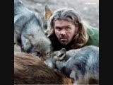 Шон Эллис: вожак волчьей стаи