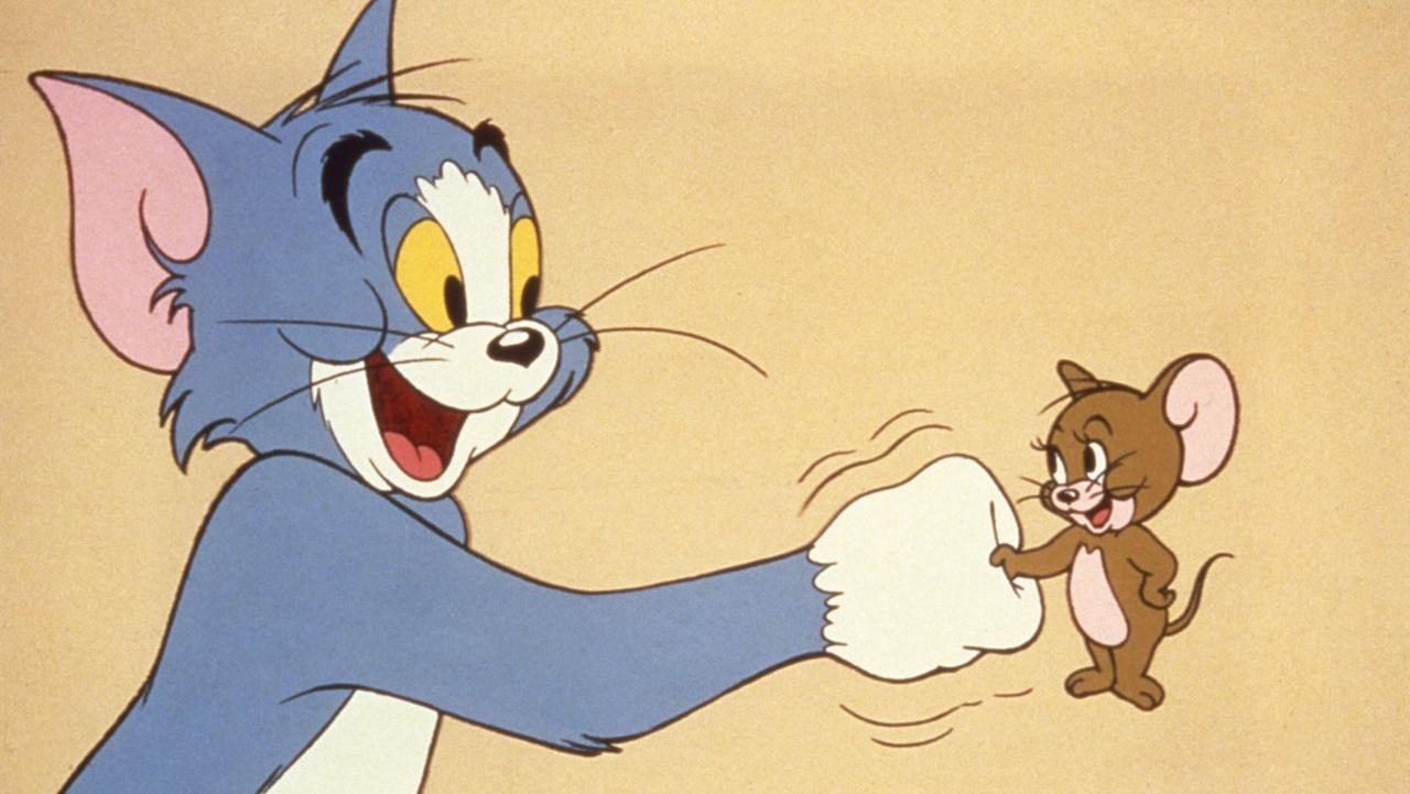 tom and jerry cartoon - HD2560×1536