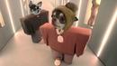 Собака читает рэп! Первый ХИТ чихуахуа Фондю. (Kanye West Lil Pump parody)