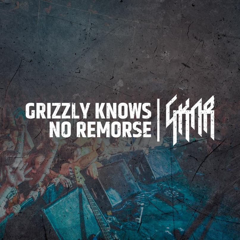 Новый альбом GRIZZLY KNOWS NO REMORSE - GKNR (2018)