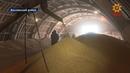 Очередную проверку сотрудники Управления Россельхознадзора по Чувашии провели в Яльчикском районе.