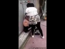 Französisches Mädchen wird brutal zusammen geschlagen von Schwarzafrikanerin.